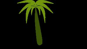 palmerica